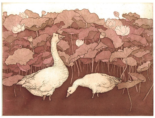 Etching and aquatint birds