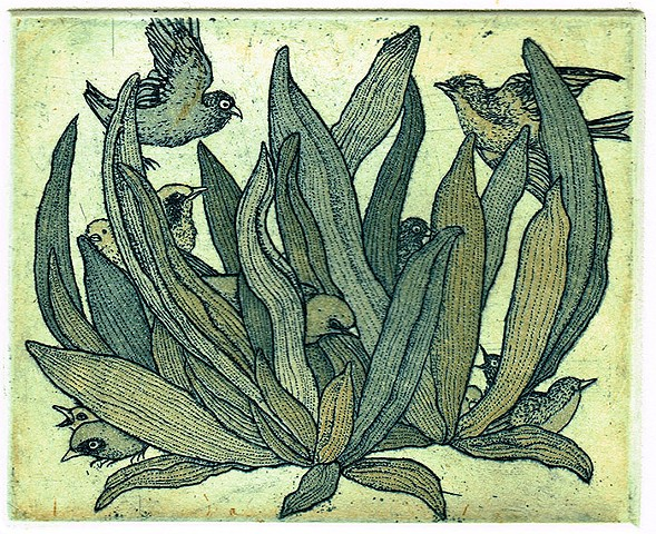 Found Etching aquatint birds