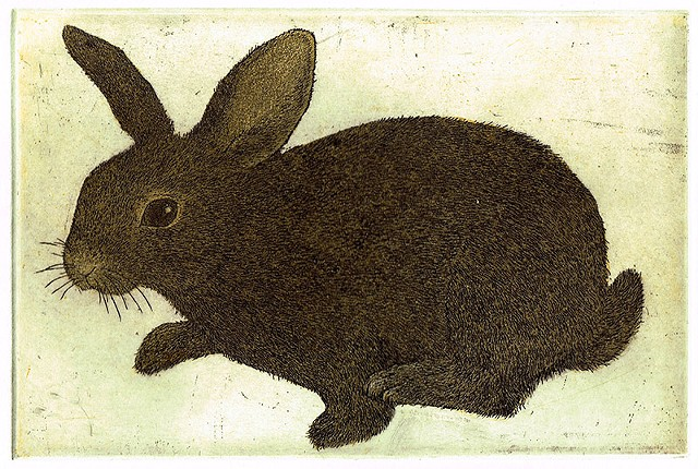 Hop etching and aquatint Rabbit