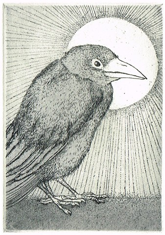 Etching and aquatint, animal, crow