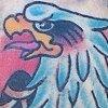 Healed eagle