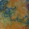 Durga, Detail