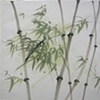 Green Bamboo, Large