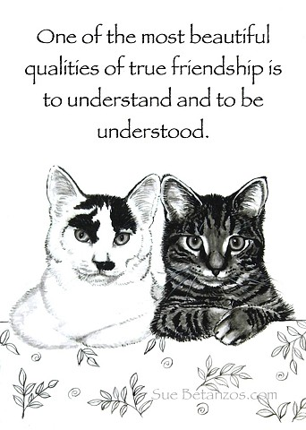 kittens, cat print, pet print, pet portrait, pet quote, Sue Betanzos, 8x10 pet print, cat art, cat portrait