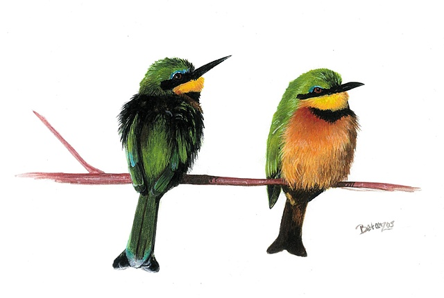 sue betanzos, bird painting, african bee eaters painting, african bird painting, african wildlife painting