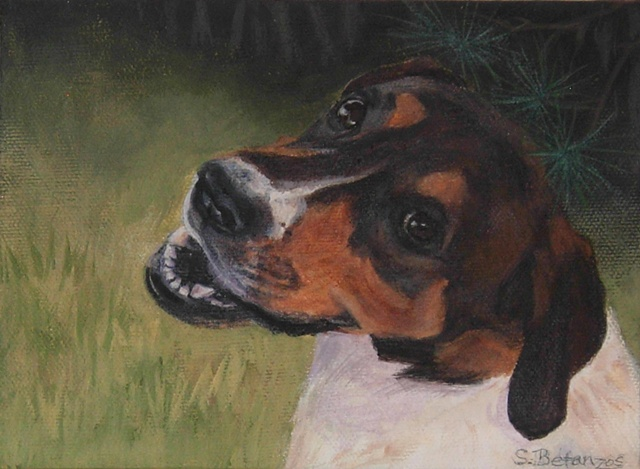 sue betanzos, dog painting, pet painting, pet portrait painting, hound dog painting, contemporary dog painting, traditional dog painting, realistic dog painting, miniature dog painting