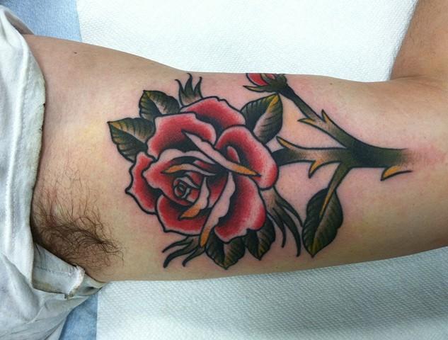 stemmed rose