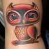zacks lil owl