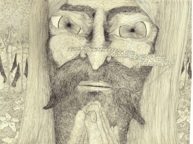 Eliot Porter (Detail)