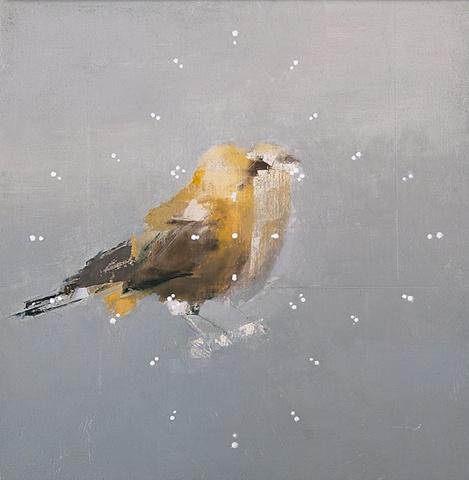 Warbler Echo