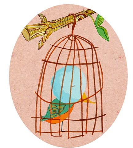 Sweet Lil Bird