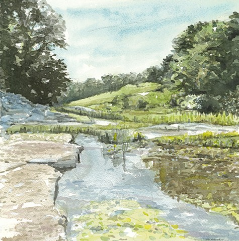 John Martinek watercolor coralville fossil gorge