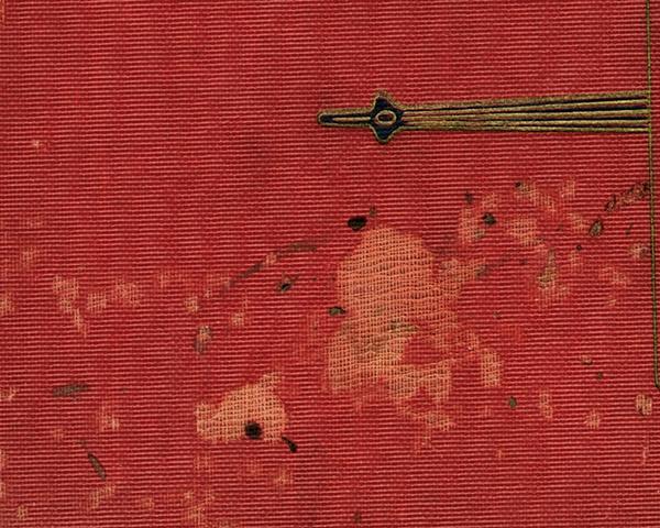 Infestations - Roach Feces