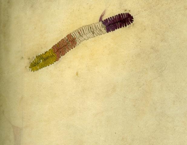Infestations-hole-stitched