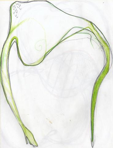 Python Pompadour