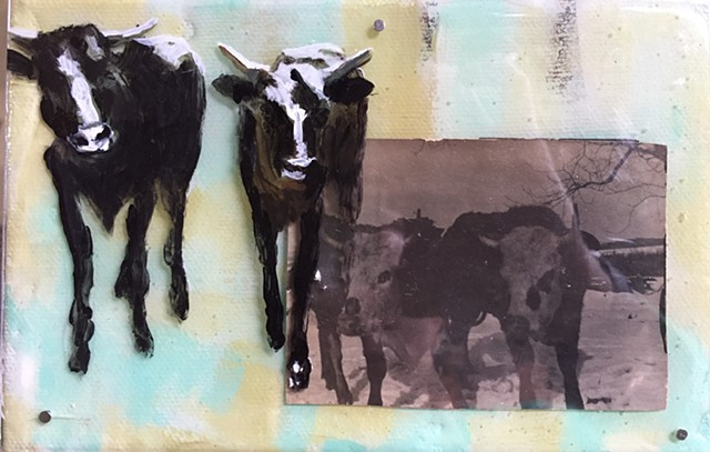 Cattle art by Katherine Bell McClure