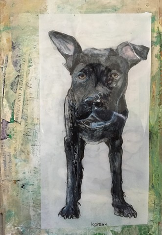 dog art by Katherine Bell McClure