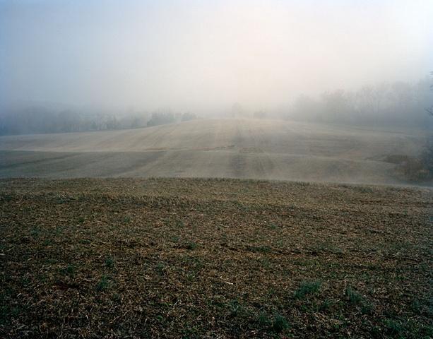 Morven Fields Albemarle County, Virginia