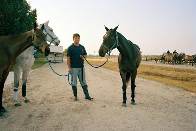 Polo Ponies West Palm Beach