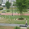 Lawn Drawing
