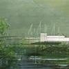 Collage: Wetlands