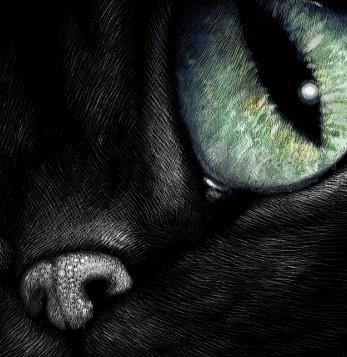 Cheshire Cat, smiling cat, mysterious cat, pop art, alice in wonderland art