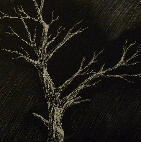 Lone Tree black and white scratchboard