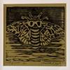 Moth of Death