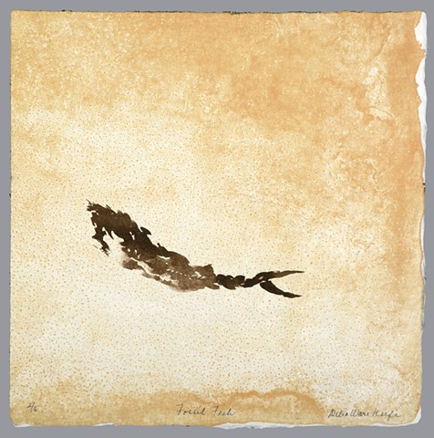 """Fossil Fish 6 of the series """"Fossilized."""""""