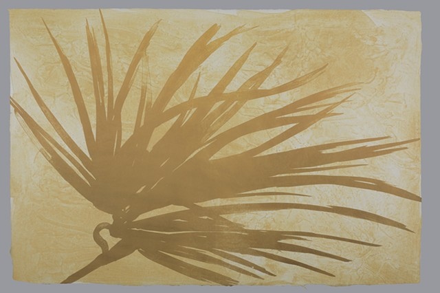 """Palm Fossil 2 of the series """"Fossilized."""""""