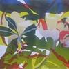 Magnoliaceous