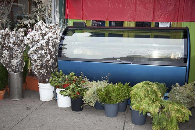 florist, New York City, NYC, urban