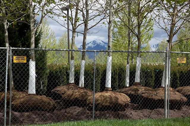 Salt Lake City, Utah, landscape, trees, landscaping, fence, mountain, West