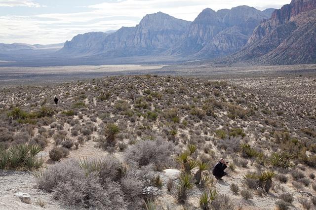 Nature, Red Rock, Nevada, desert, landscape, photographer