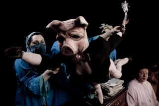 Porco the Pig
