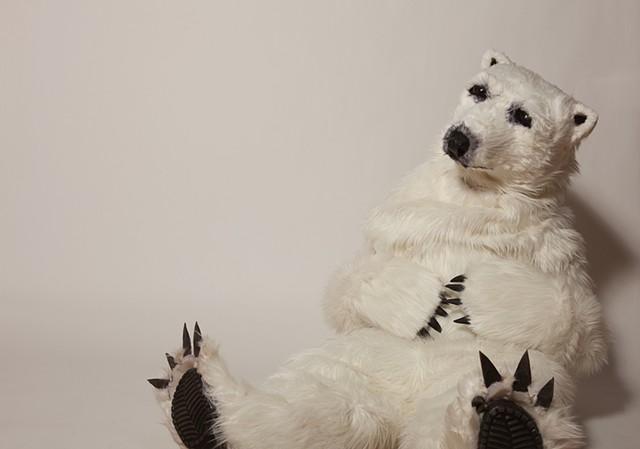 Polar Bear. Photo by Benjamin Heller.