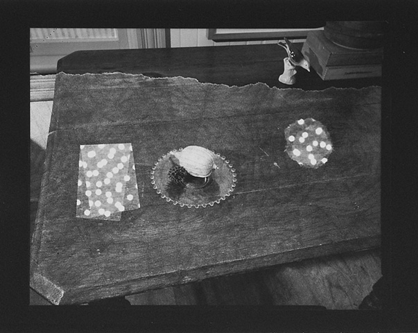 Still Life with Photogram #7