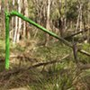 Bush Vandal (Green Wash)