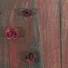 "Title: Memento Mori  Medium: Acrylic, Graphite And Silk Roses On Canvas  Size: 60"" x 36""  Year: 2010"