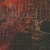 "Title: Nunca Mas  Medium: Acrylic, Spray Paint And Color Pencil On Canvas  Dimensions: 36"" x 48""  Year: 2009"