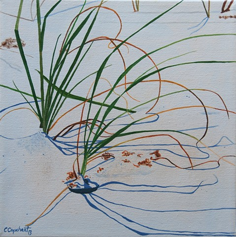 Beach Grass IV