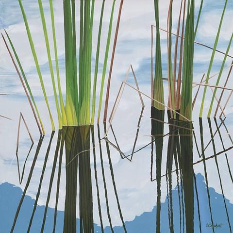 Northwood Pond Grasses 5