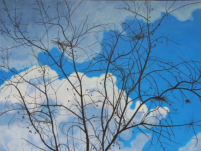 winter, tree, clouds