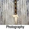 Photographic Work