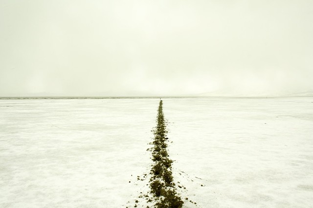 """500 ft. track in the mudflat of Summer Lake, ending at a large isolated rock.  2012. Archival ink jet print, 13x20"""""""