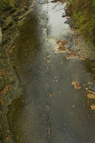 Creekline