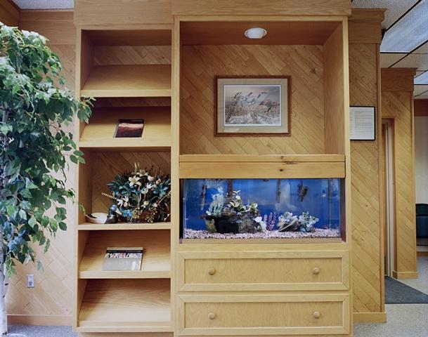 Dentist Fish, St. Cloud MN