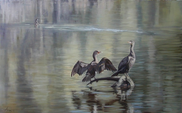 Cormorants - SOLD