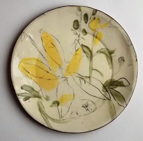 plant plate