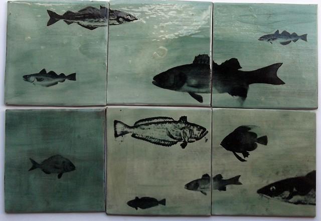 Aquarium tiles, £12 each